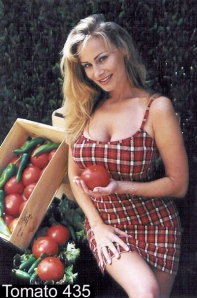Tomates.recettes